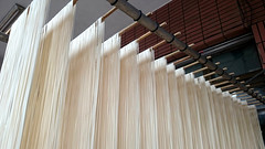 The Home is a noodle factory (葉 正道 Ben(busy)) Tags: noodles makingnoodles family 家庭 台中市 taichungcity taichung city taiwan 台灣 factory 工廠 line 線條 bambooshelf 竹架 麵條 home 家