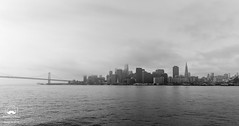 A Cityscape in Black and White (allentimothy1947) Tags: architechure califonia city ferry sanfrancisco buildings cityscape landscape reflections skylines larkspur blackandwhite bw view travel bay bridge water clouds cloudy fog weather wet ocean skyscraper foggy