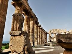 _1360640 Selinunte (13) (archaeologist_d) Tags: sicily italy selinunte archaeologicalsite archaeologicalruins greekruins 409bc 5thcenturybc templee templeofhera