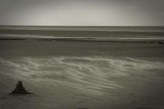 Nordsee (frucht-drops) Tags: nordsee northsea norddeich strand watt wattenmeer sturm storm stürmisch stormy sonnig sunny wolken clouds märz march drausen outside meer sea landschaft landscape greyscale schwarzweis