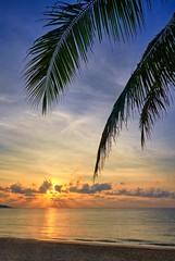 Lamai beach, Thailand (Vest der ute) Tags: g7xm2 g7xll thailand sky sunrise leaves trees clouds sand beach sea water earlymorning fav25 fav200