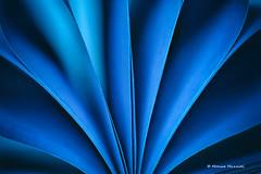 """The Blues"" for Macro Mondays (Monica Muzzioli) Tags: macromondays theblues macro paper abstract notebook shapes blue blues"