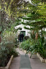 Pavillion Path (Bri_J) Tags: botanicalgardens sheffield southyorkshire uk park yorkshire nikon d7200 winter greenhouse