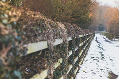 Apologies (Jeana Marie Photography) Tags: winter england snow fence path walkway trail memories apologies life hurt love tired colour crazy dignity focus drive determination canon 7dmii 50mm simplicity beauty sunset nature landscape trees winters