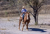 Jinete (Brujo+) Tags: juanpabloochoa caballo jinete ranchoelnido vaquero