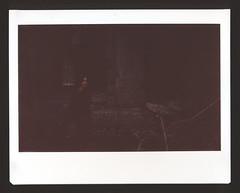 (նորայր չիլինգարեան) Tags: canoscan9000fmarkii fujifilminstaxwide300 աղջիկ դիլիջան ժապաւէն լուսանկարներ խանջեանիտուն շէնք չմշակած