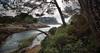 (181/18) el camino a la Malladeta (Pablo Arias) Tags: pabloarias photoshop photomatix capturenxd españa cielo nubes mar agua mediterráneo árbol pino calagaldana menorca