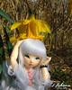 Hoshizora_54 (zeroyo yasu) Tags: ltf littlefee luna bjd fairyland yosd doll jardin bois lapin fleur