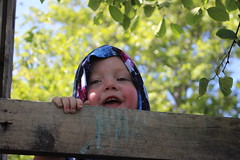 Delight (quinn.anya) Tags: paul toddler leaves adventureplayground