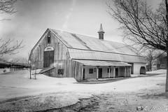 180403-24 Grange de 1895 (clamato39) Tags: grange barn rural bellechasse provincedequébec québec canada noiretblanc monochrome blackandwhite bw winter hiver neige snow