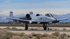 "Fairchild Republic A-10C Thunderbolt II of the 354th Fighter Squadron ""Bulldogs"" from Davis-Monthan AFB (Norman Graf) Tags: heritageflight 2017a10heritageflightteam a10 a10c tacticaldemonstrationteam 810956 airplane 355fw usaf 810966 aircraft fairchildrepublic airshow 354fs 12af 2017losangelescountyairshow bulldogs 12thairforce 354thfightersquadron 355thfighterwing cas closeairsupport dm davismonthanafb jet plane thunderboltii unitedstatesairforce warthog"