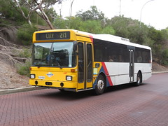MAN SL202 445 at TTP interchange (RS 1990) Tags: bus adelaide southaustralia march 2018 445 man sl202 route271 interchange teatreeplaza ttp modbury teatreegully