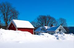 In Snow (bjorbrei) Tags: winter snow countryside farm trees sky nes maridalen oslo norway