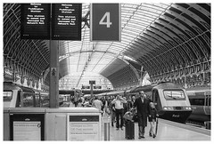 Welcome to Paddington Station (Nodding Pig) Tags: london paddington railway station train england greatbritain uk 2017 class43 dieselelectric locomotive mtu 43136 43138 hst highspeedtrain passengers gwr greatwesternrailway film scan monochrome 35mm ilford fp4 nikonfm2 nikkor50mmlens 20170716027101border