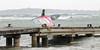 20180408-IMG_6045.jpg (Joseph Meehan) Tags: ir84 joemeehan palmbeach cannes windsurf plancheavoile kitesurf glisse cotedazur vent mer