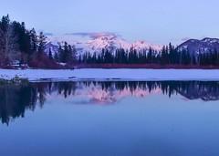 Vermillion Lakes Banff April 2018 (Mountain lakes dreaming) Tags: sunset pink blue vermillionlakeswinter canadianwinter banff vermillionlakes