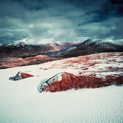 Loch Treig (Mark Rowell) Tags: lochtreig rannochmoor scotland hasselblad 903 swc ir infrared aerochrome 6x6 120 mediumformat expired film
