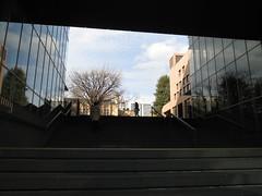 IMG_2186 (UJIKE Norio) Tags: tokyo minatoku minato university keio keiogijyuku keiouniversity startingpoint lwp 書評 iphone 5s iphone5s
