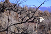 Casolare in inverno (Vincenzo Elviretti) Tags: casolare casa house alberi tree forest campagna country countryside bellegra roma provincia lazio paese paesi natura nature morone morrone valle di cona cupa grotte dellarco arco