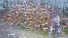 20180331_172539_s (wos---art) Tags: bildschichten schneebruch sturmbruch äste bäume aufräumen haufen