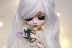 flower road (hauntiing) Tags: pullip blanche pullips doll dolls toy toys