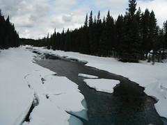Banff National Park Lake Louise (Mr. Happy Face - Peace :)) Tags: art2018 scenery nature forest spring canadaparks banff field lake louise hiking breakup yyc sky cloud 7dwf flickrfriday flickrfriends bc yoho banffparkway alberta canada