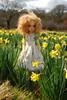 Daffodils (Little little mouse) Tags: fairlaryssa kayewiggs primrosebramblethorn bjd dollfie competitionwin factoryfaceup fieldofhope daffodils stauntonharold