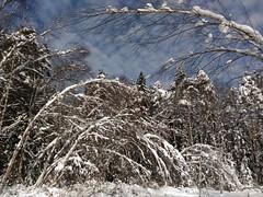 последствия налипания снегопада