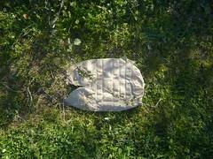 found (Ponto e virgula) Tags: cebolal chão found object lixo trash