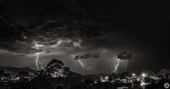Newport - Storm (John_Armytage) Tags: storm lightning newport northernbeaches manlydaily nikond850 nikon2470 australia nsw visitnsw clouds rain