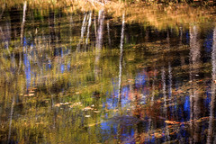 IMG_3810_Smoky Mountinas (Alex Hsieh (椰子人)) Tags: ç´è² smokymountains smokymountainsnationalpark nationalpark greatsmokymountains travel roadtrip 2016 fall fallfoliage autumn foliage canon canon6d usa tennessee tn northcarolina