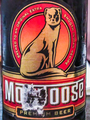 Reading_Real_Ale_Trail_Y2018_M03_D31_h19_m26s52 (James Hyndman) Tags: pappadams mongoose mooose mongoosebeer mooseheads moosehead readingaletrail readingrealaletrail realaletrail realale beer ale reading camra berkshire