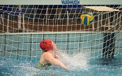 44050876 (roel.ubels) Tags: enc arnhem waterpolo hbw sport topsport 2018 2e klasse
