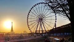 575 Paris en Février 2018 - les Tuileries et la Grande Roue de la Place de la Concorde (paspog) Tags: paris france 2018 février februar february tuileries jardin jardindestuileries granderoue toureiffel sunset coucherdesoleil