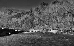 Taking in the Buffalo River and a Surrounding Hillside of Trees (Black & White, Buffalo National River) (thor_mark ) Tags: alongbanksofbuffaloriver blackwhite blueskies bostonmountains buffalonationalriver buffaloriver capturenx2edited colorefexpro day2 evergreens hillsideoftrees landscape lookingnw mountains mountainsindistance mountainsoffindistance nature nikond800e northamericaplains oaktrees oaktreesforest outside ozarkhighlands ozarkplateau portfolio project365 river rivervalley riverbank rollinghillsides steelcreekcampground sunny trees treesinwinterwithoutleaves triptoozarknationalforestandmountains arkansas unitedstates