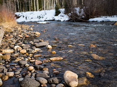 River runs through (Blackpinebear) Tags: united states river rocks forest pines snow spring time adventure travel landscape clear water mountain fresh freedom colorado