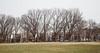 --A-s-t-o-r-i-a-- (0sire) Tags: queens nyc newyorkcity astoria astoriapark trees architecture apartments park