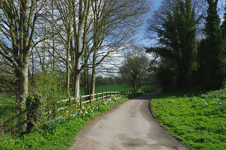 The Canterbury Circle.....Section two, Canterbury - Grove Ferry and through the Blean.