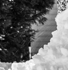 Creative Waterdrops (evakongshavn) Tags: flickrfriday feedyourcreativity water waterdrops star stars startrails nikon nikond7200 bnwphoto bnw bw blancoynegro blacknwhite blackandwhite blackwhite biancoenero svarthvit firework fireworks 7dwf