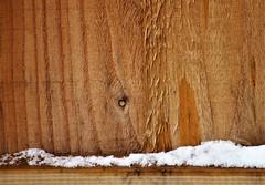 Nice grain (dlanor smada) Tags: wood snow grain spring