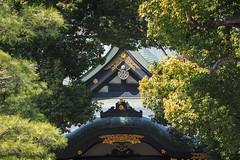 都電荒川線一日遊|Tokyo (里卡豆) Tags: bunkyōku tōkyōto 日本 jp olympus 75mm f18 神之光 olympus75mmf18 penf