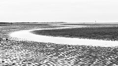 laagwater (robvanderwaal) Tags: 2018 natuur landscape nature water nederland lowtide kwadehoek laagwater sea mono robvanderwaalphotographycom beach netherlands monochrome zwartwit zw zand sand blackandwhite strand landschap bw zee