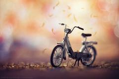 Ciao Piaggio (Davide Solurghi Photography) Tags: davidesolurghiphotography davidesolurghi moped motorino ciclomotore bokeh toys toycars miniature tinycars modellino carphotography toysphotography stilllife naturemorte naturamorta ciao