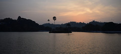 Kandy Lake (Miriam Christine) Tags: kandylake srilanka water palmtree silhouette evening sunset pink coloured contrast ripples freshwater city waterscape