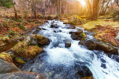 Soulcem en bas (zqk09) Tags: france canon ariege soulcem sunset coucher soleil sun nature water eau rivière arbre tree sky ciel cloud love
