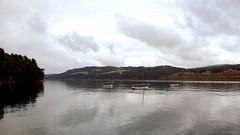una mañana gris (vitofonte) Tags: ria riaderibadeo nubes clouds barcas boats galicia estuary ribadeotidalriver naturaleza nature natura natureza vitofonte