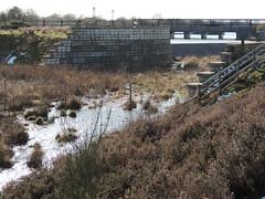 Anglesey Branch Canal A030 021 (touluru) Tags: brownhills canal we wyrley essington wyrleyandessingtoncanal birmingham navigations bcn coal mine railway a5 staffordshire staffs dam anglesey basin ogley junction chasewater norton pool reservoir