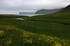 Day 2: On the way to Kjaransvík bay (Gregor  Samsa) Tags: iceland icelandic hornstrandir naturereserve nature reserve august summer trip exploration journey adventure outdoor outdoors scenery scenic path footpath trail deepnorth hike hiking walk walking trek trekking backpacking wandering track tracking wild wilderness