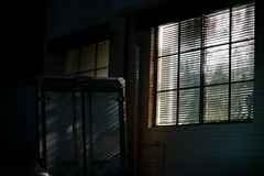 2023/1831: (june1777) Tags: snap street seoul hongdae night light window shadow sony a7ii canon ef 85mm f12 ii 6400 clear
