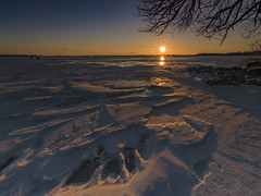Lake Simcoe (Michael Zahra) Tags: canada ontario winter snow ice water frozen cold wind windy freeze lake simcoe lakesimcoe barrie sutton sibbald point park sun sunrise sunset tree rock outdoors landscape waterscape 645 645z mediumformat pentax